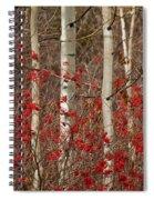 Aspen And Berries Spiral Notebook