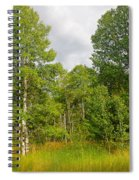Aspen And Others Spiral Notebook