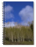 Aspen Dream Spiral Notebook