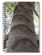 Aspen Eye Spiral Notebook