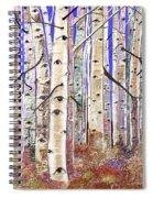 Aspen Eyes Spiral Notebook
