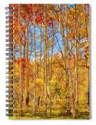 Aspen Fall Foliage Portrait Red Gold And Yellow  Spiral Notebook