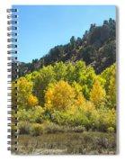 Aspen Grove In The Fall Spiral Notebook