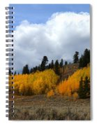 Aspen Hillside Spiral Notebook