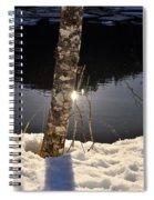 Alder In Winter Spiral Notebook