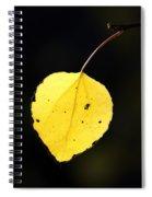 Aspen Leaf  In Fall Spiral Notebook