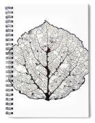 Aspen Leaf Skeleton 1 Spiral Notebook