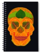 Aspen Leaf Skull 3 Black Spiral Notebook