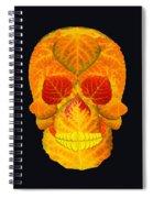 Aspen Leaf Skull 6 Black Spiral Notebook