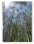 Aspen Light Spiral Notebook