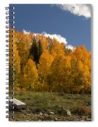 Aspen On The Road To Telluride Dsc07397 Spiral Notebook