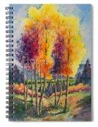 Aspen Overlook Spiral Notebook