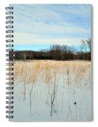 Aspen Prairie 2 Spiral Notebook