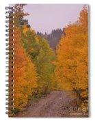 Aspen Road Spiral Notebook