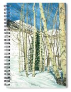Aspen Shelter Spiral Notebook
