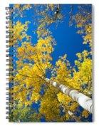 Aspen Sky Spiral Notebook