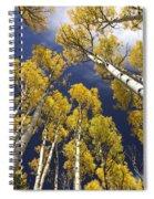 Aspen Tops  Spiral Notebook