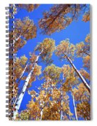 Aspen Tree Tops Spiral Notebook