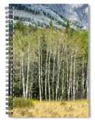 Aspen Trees Along The Bow Valley Spiral Notebook