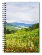 Aspen Trees And Wildflowers Spiral Notebook