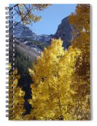 Aspen Window Spiral Notebook