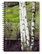 Aspens 4 Spiral Notebook