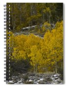 Aspens In Snow Spiral Notebook