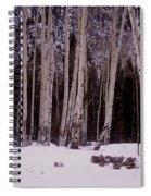 Aspens In Snow Spiral Notebook