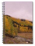 Aspens In The Mist Spiral Notebook