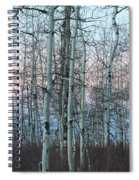 Aspens In Twilight Spiral Notebook