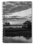 Assateague Salt Marsh Bw Spiral Notebook