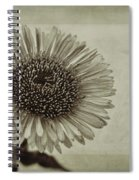 Aster With Textures Spiral Notebook