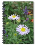 Asters In Close-up Spiral Notebook