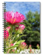 Asters Spiral Notebook