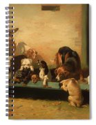 At A Dogs' Home Spiral Notebook
