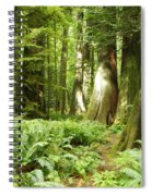 At Cathedral Grove Spiral Notebook