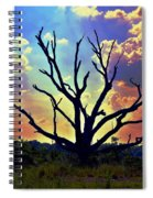 At Life's End There Is Light Spiral Notebook
