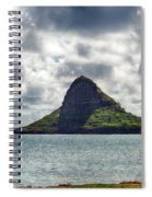 At Mokoli'i's Summit Spiral Notebook