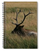 At Rest Spiral Notebook