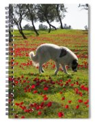 At Ruchama Forest Israel 1 Spiral Notebook
