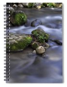 At The Banias River 1 Spiral Notebook