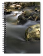 At The Banias River 2 Spiral Notebook