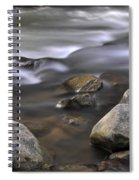 At The Banias River 3 Spiral Notebook