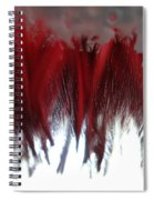 At The Car Wash 5 Spiral Notebook