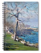 At The Park By Lake Ontario Spiral Notebook