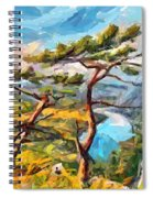 At The Top Of The Mountain Spiral Notebook