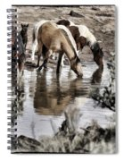 At The Watering Hole 1 Spiral Notebook