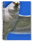 At Your Disposal The Waiting Gull Spiral Notebook