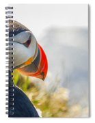 Atalantic Sea Puffin In Close Up Spiral Notebook
