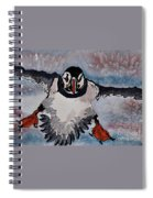 Atlantic Puffin - Set 2 Of 3 Spiral Notebook